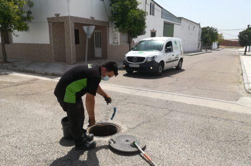 El Ayuntamiento de Vivares actúa contra los roedores y las cucarachas